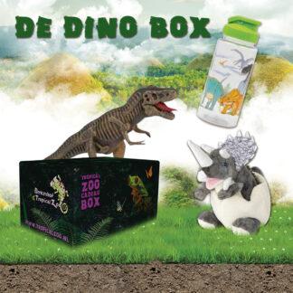 Dino box