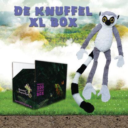 Knuffel XL Box Ringstaartmaki