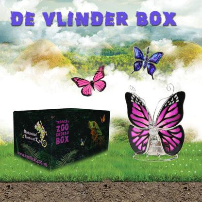 Vlinderbox